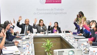 Photo of Diputados del Estado de México avalan en comisiones protección de animales abandonados al considerarlos seres sintientes