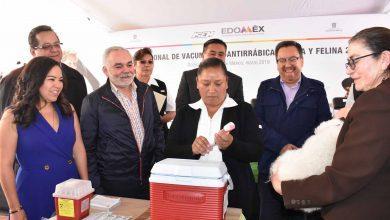 Photo of Estado de México arranca Primera Semana Nacional de Vacunación Antirrábica Canina y Felina 2019